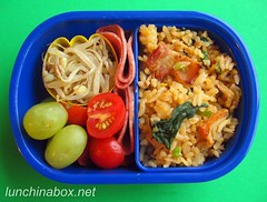Fried rice bento lunch for preschooler | by Biggie*