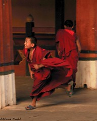 Monks at Play - Paro Dzong | by Atticus Finch!