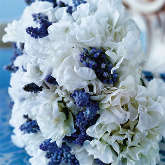 bouquet ideas for wedding blue bouquet wedding flowers tibimages flickr 2027