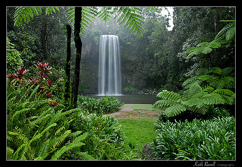 MIllaa Millaa Falls | by Keith Rowell Photography