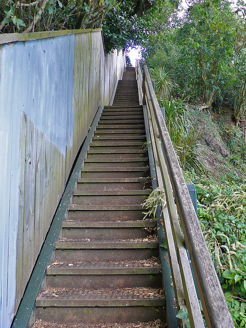 ... Secret Stairs To Mt. Eden | By Thebonobo