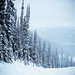 Selenium Snowboard-21.jpg
