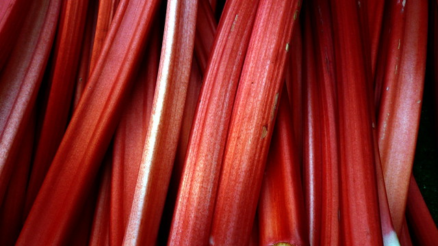 Rhubarb, Borough Market, London, UK.JPG