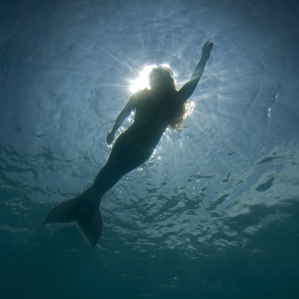 Mermaid Had A Wonderful Shoot Today With Our Own Kona