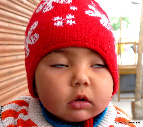 Ladakhi Kid | by Aswin Anand
