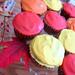 Fall Cupcakes V