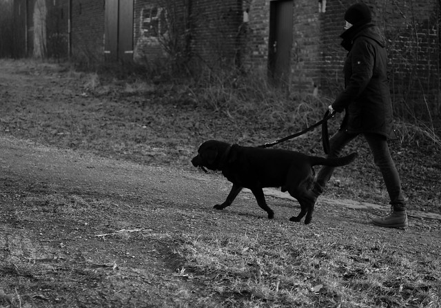 walking with black dog 2