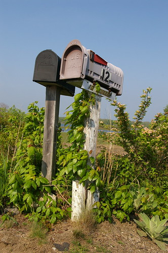 Mailboxes, Great Island, Narragansett, RI | by Bryan Pocius