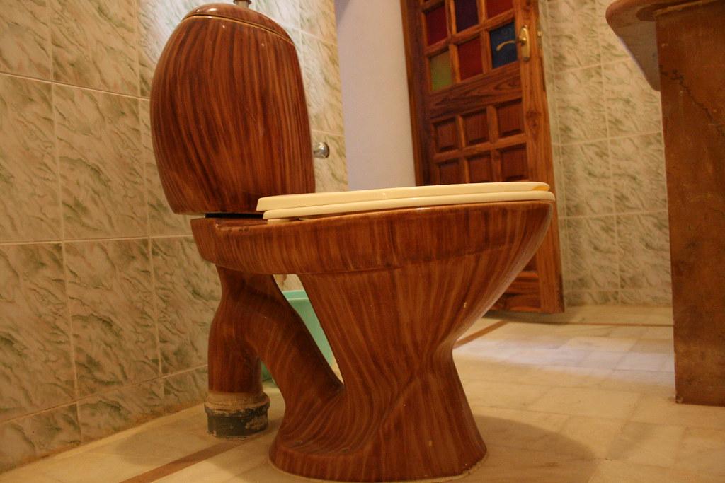 Image result for best toilet
