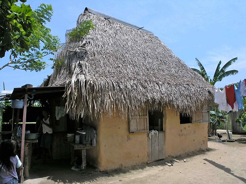Thatched roof house casa con techo de palma aldea el ba for Techos de casas en honduras