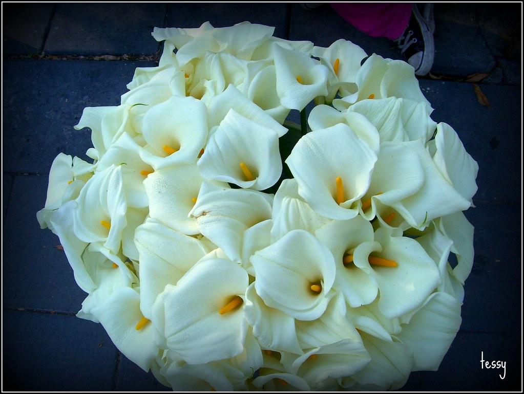 Flores Ramo De Alcatraces Teresita De De La Rocha Flickr