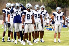 Dallas Cowboys Wide Receivers | by mboxgirl