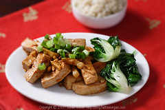 Sichuan Tofu with Garlic Sauce 1 | by domin0