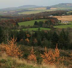 Overlooking Ballinderry Rathdrum | by Chris*Bolton