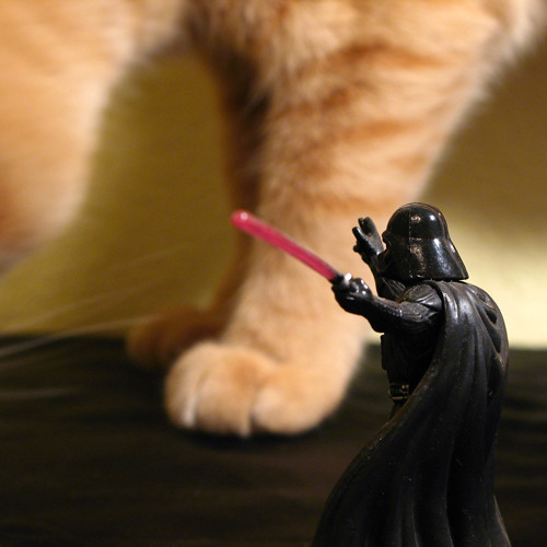 Meow Wars | by kevin dooley