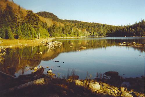 Little notch pond 1 little moose unit maine public res for Free land maine