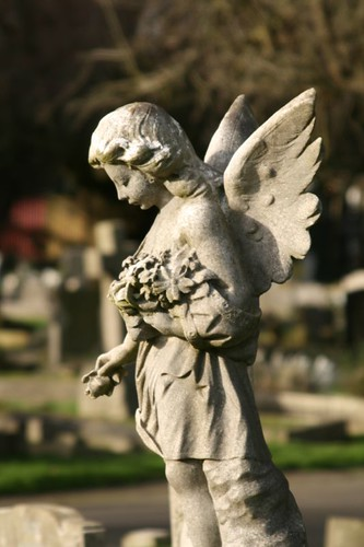 Guardian angel | by Peter Denton