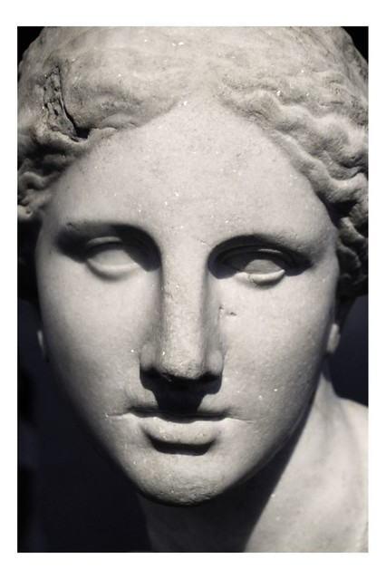 """The Bait - Head of Aphrodite I 