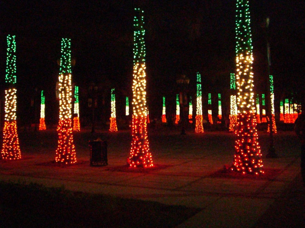 Christmas Lights, Ft. Pierce | No, not an festival of ...