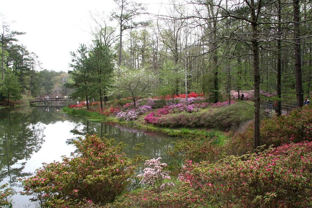 Callaway Gardens Georgia Spring Color At The