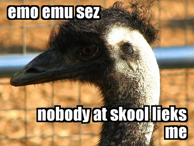 Emo Emu Created With Fd S Flickr Toys Jessie Pearl