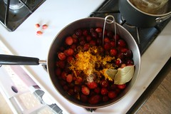 My favorite cranberry sauce | by kendra-jane