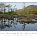 Reflecting On Crane Mountain Pond