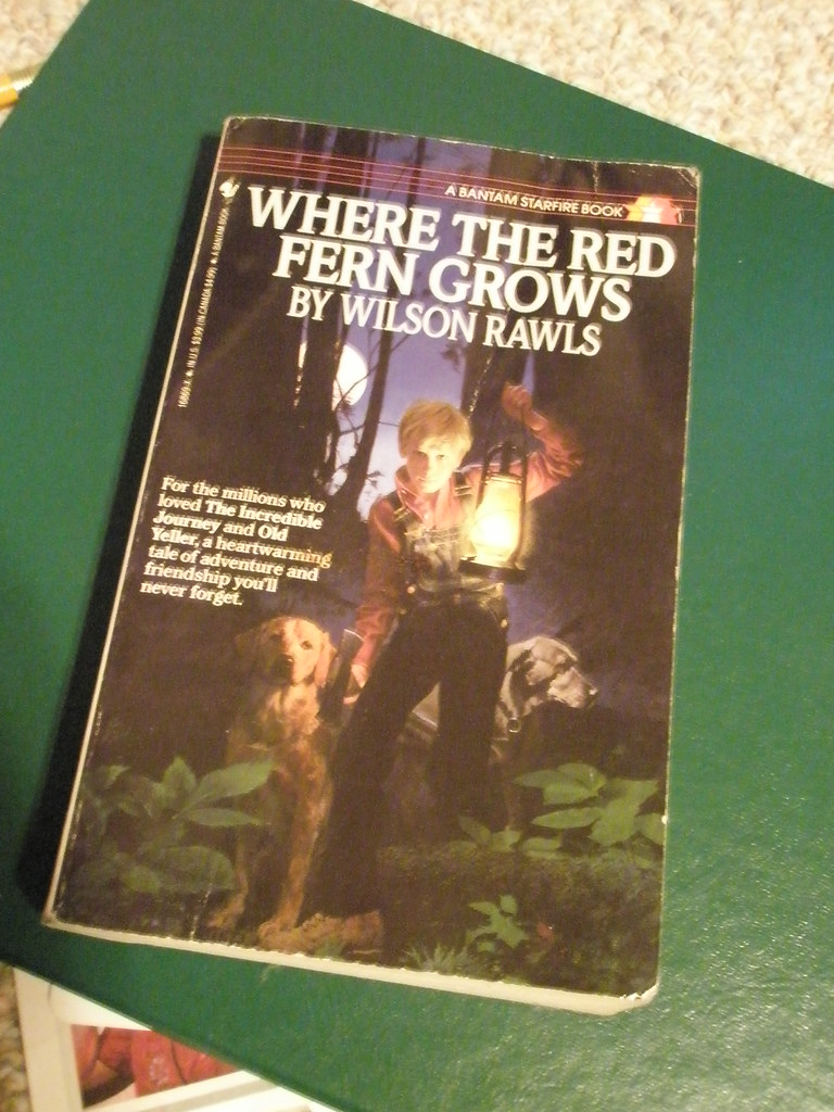 where the red fern grows book report