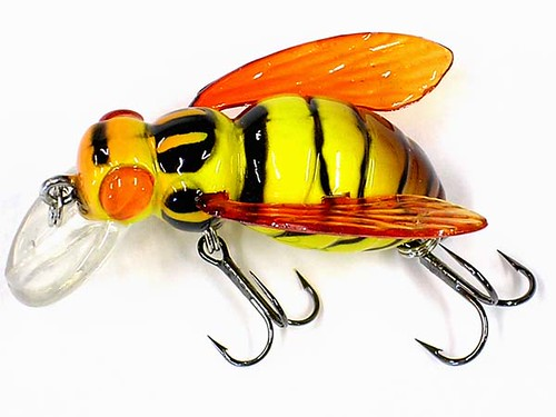 Oz2uktackle river2sea bee fishing lure a great topwater for Funny fishing lures