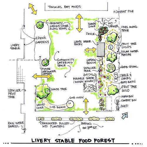 Food Forest Design Plans