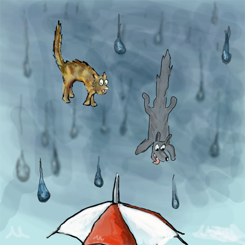 Cats N Dogs Raining