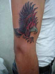eagle tattoo | by Nick the tatt mad