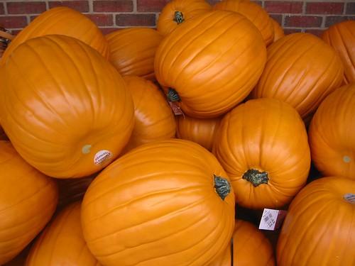 fake carvable plastic pumpkins by futureatlascom - Large Plastic Pumpkins