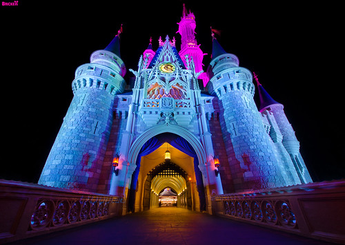 Cinderella Castle: Through The Eyes Of A Child | by Tom.Bricker