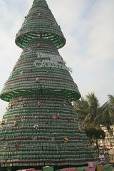Beer bottle christmas tree | by ebreidy