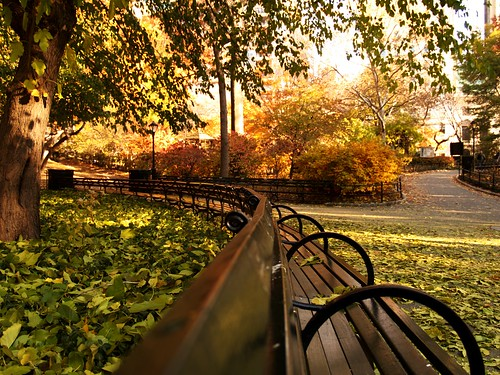 Bench | by Fernando X. Sanchez