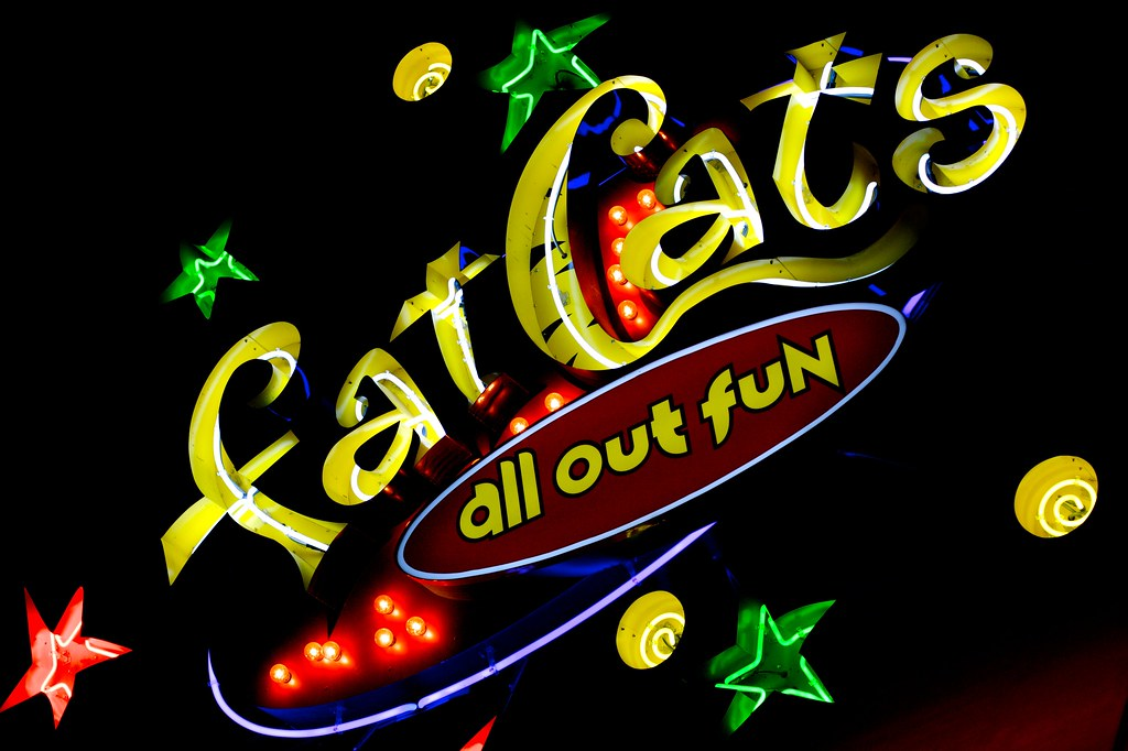 Fat Cat S All Out Fun Jeremy Brooks Flickr
