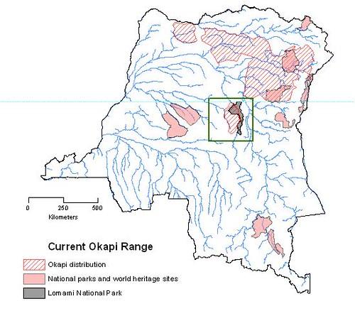 okapi range in DR Congo
