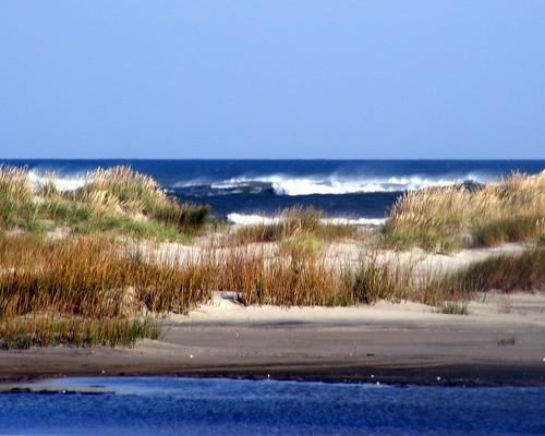 Ocean Dunes N Myrtle Beach