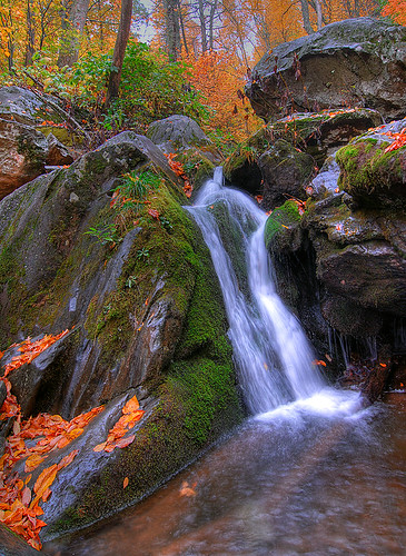 """Fall"" Water - Shenandoah National Park 