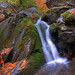 """Fall"" Water - Shenandoah National Park"