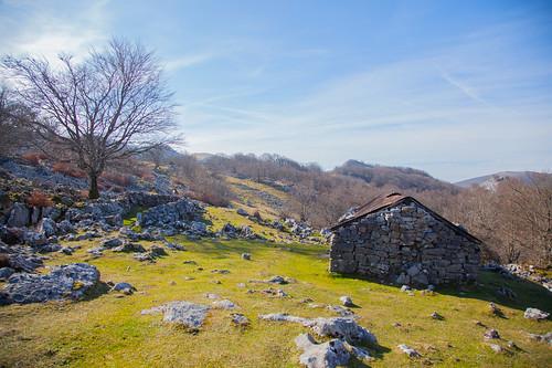Parque Natural de Gorbeia  #DePaseoConLarri #Flickr -5386