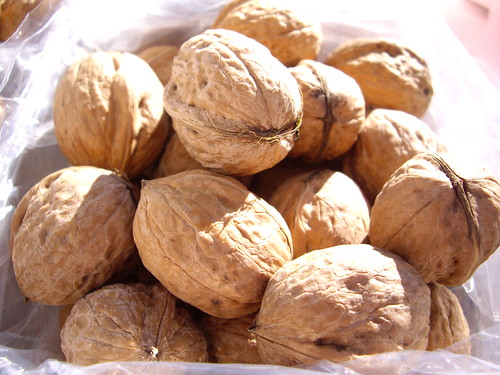Walnuts from the Worthington Farmers Market, Oct. 2007 | by swampkitty