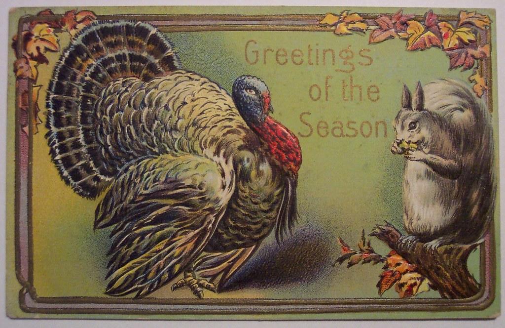 thanksgiving turkey funny cartoon