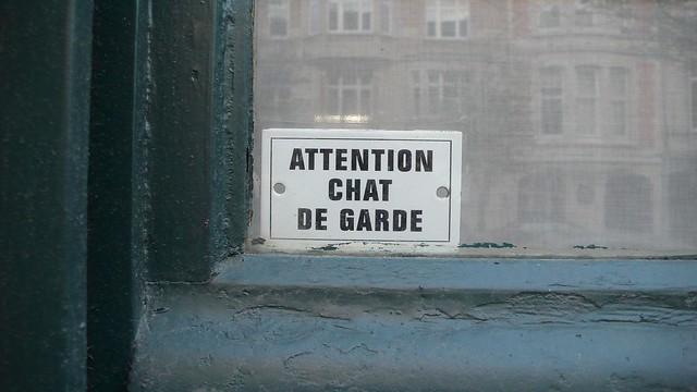 attention chat de garde flickr photo sharing. Black Bedroom Furniture Sets. Home Design Ideas