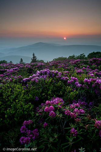 Grassy Ridge Sunrise | by Daniel Burleson
