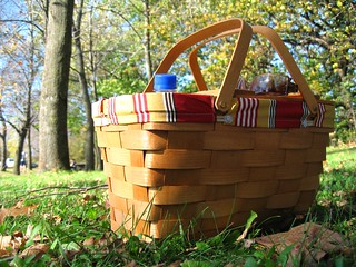 picnic basket | by the queen of subtle