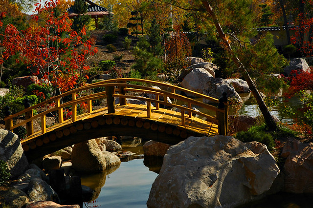 Delicieux Albuquerqueu0027s Japanese Gardens | By Jwoodphoto Albuquerqueu0027s Japanese  Gardens | By Jwoodphoto