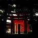 shibuya 12-05-08 020 copy