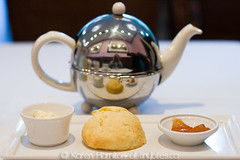 The Urban Tea Merchant: orange and ginger scone | by Tiny Bites